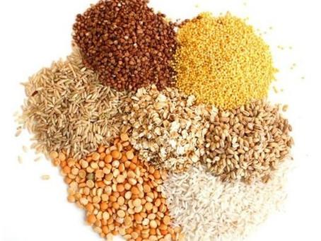 Зерновой корм для кроликов. Изготавливаем и разбираемся