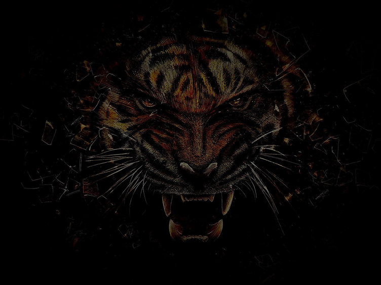 Team Tigerfeet Linedancer