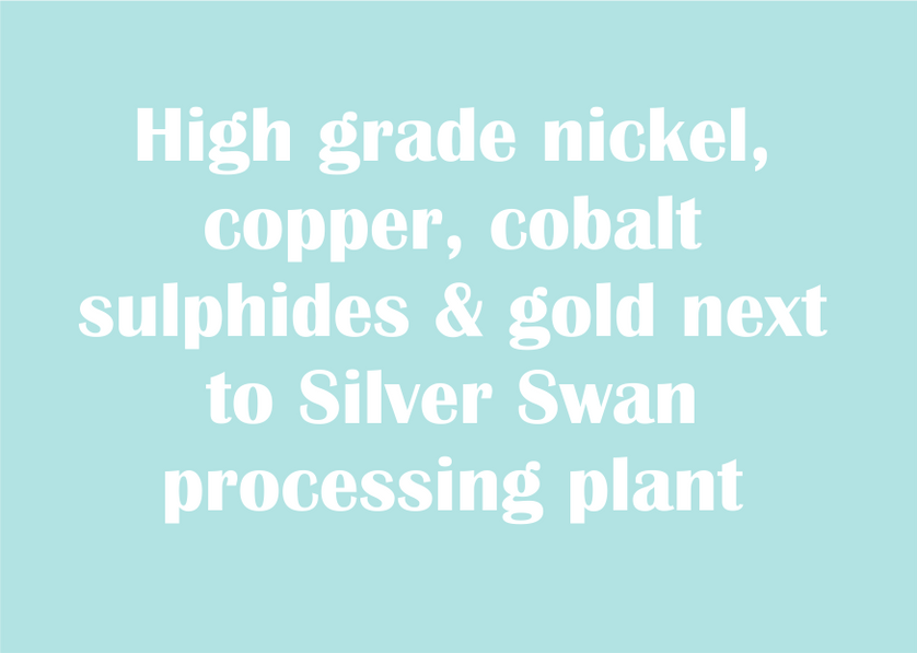 moho website blocks silver swan 1.png