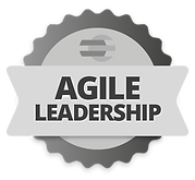 agile_leadership.png
