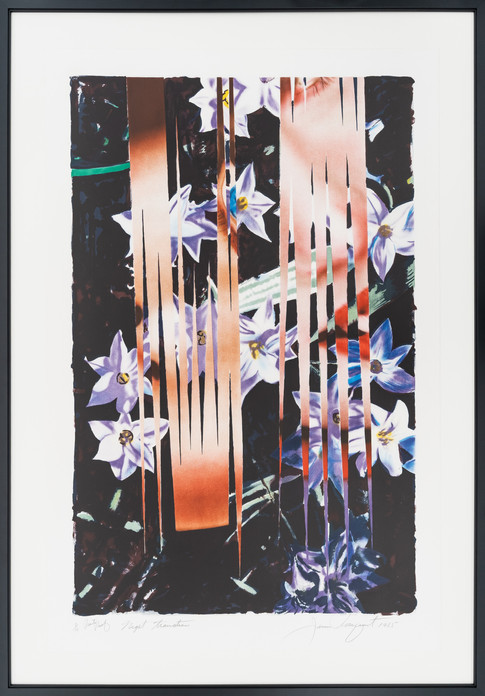 "Rosenquist ""Night Transitions"""