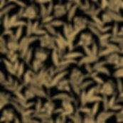 TS9682-25 Biskara, Black.jpg