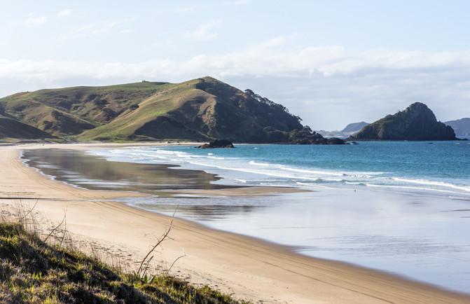 Exploring The Coromandel NZ