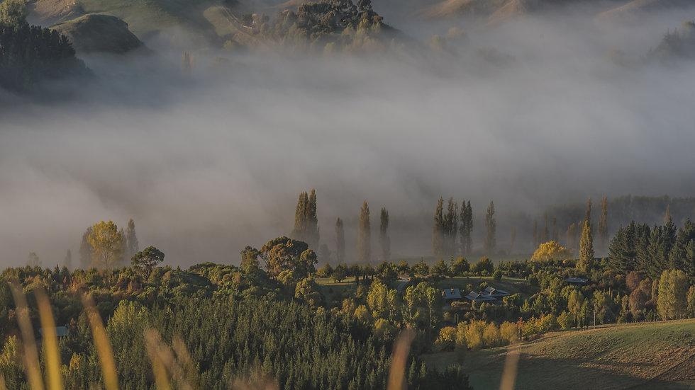 Te Mata Peak Cloud