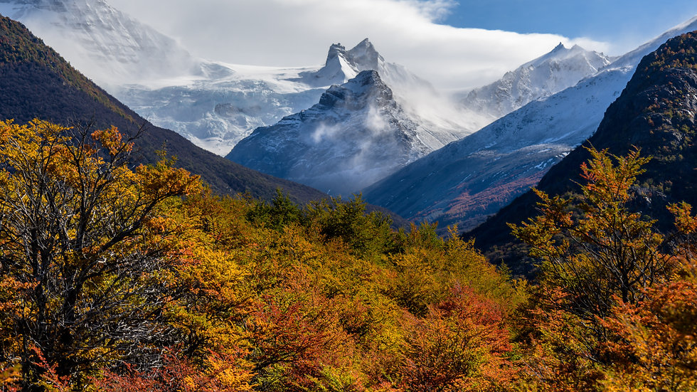 Patagonia Autumn