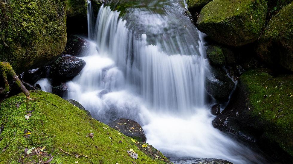 Wairere Waterfall