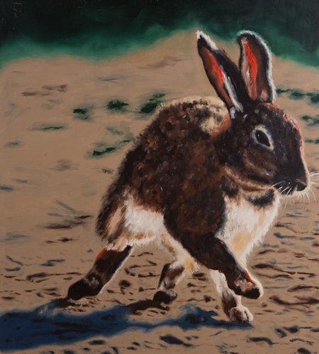 Jackrabbit - Limited Edition Giclée Print on Canvas