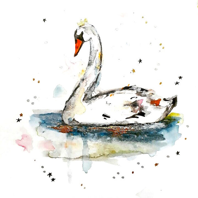 Swan Watercolour