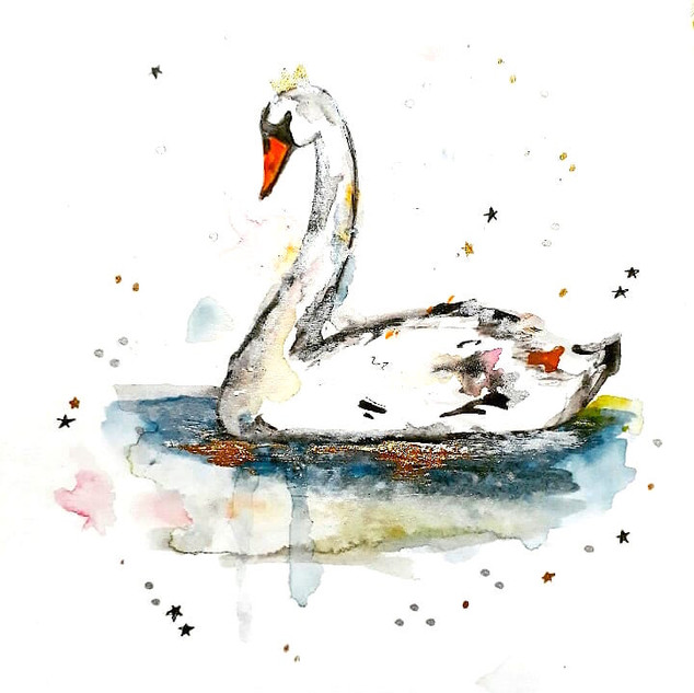 Swan Watercolour