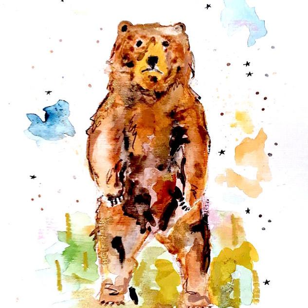 Bear Watercolour
