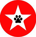 my logo.jpg