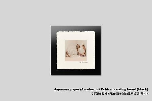 手漉き和紙,写真,犬,仔犬,ペット,チワワ,動物,インテリアフォト,かわいい,アートフレーム,壁掛け,壁飾り,装飾,オリジナルプリント,正方形,和室,フォトフレーム,プレゼント