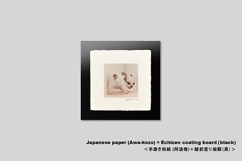 手漉き和紙,写真,犬,仔犬,ペット,チワワ,動物,インテリアフォト,かわいい,アート,正方形,額装,和室,壁掛け,壁飾り,装飾,オリジナルプリント,フォトフレーム,プレゼント