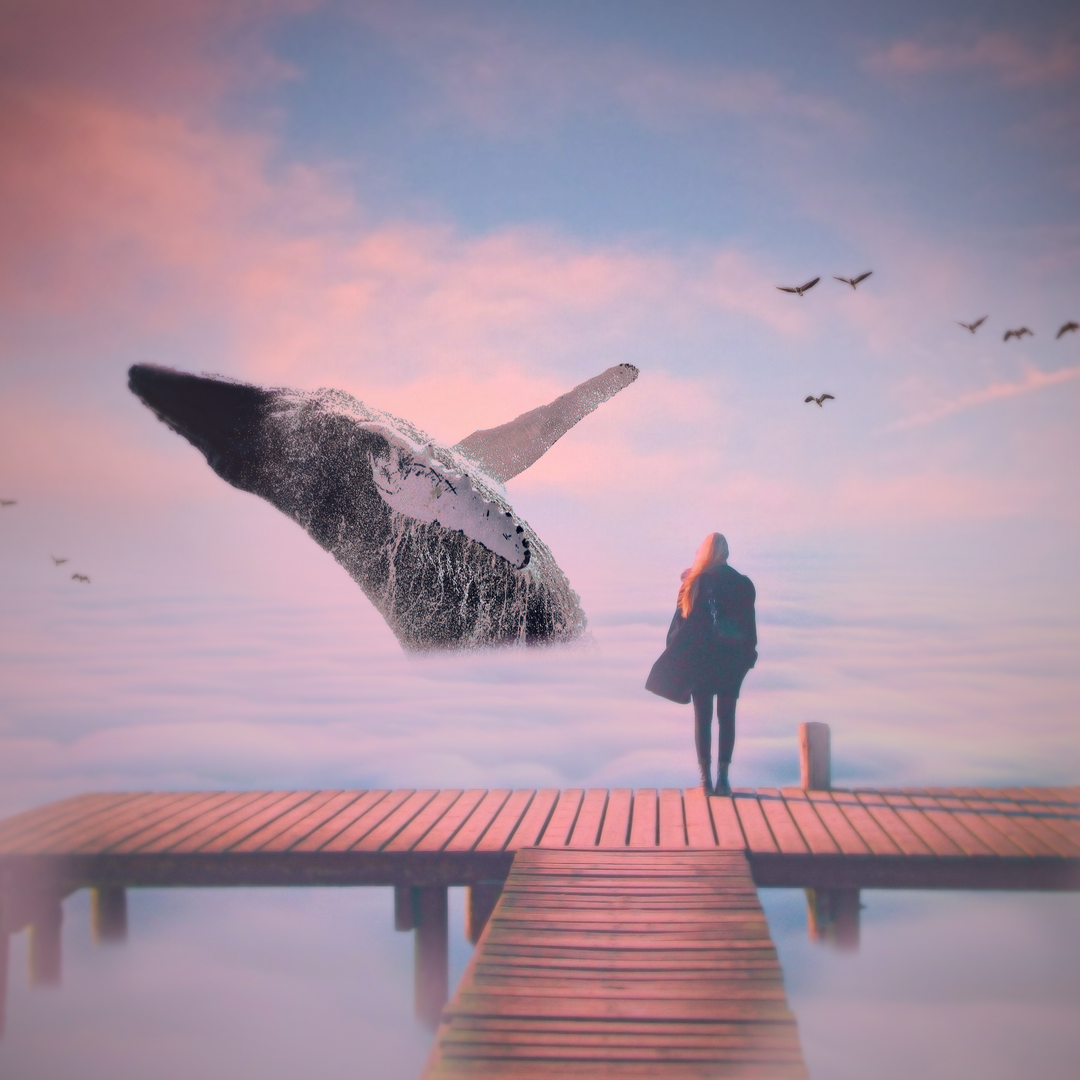 Whale Manipulation.png
