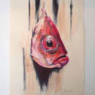 Fish head