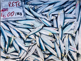 When the sea was full of Fish. Sardines.