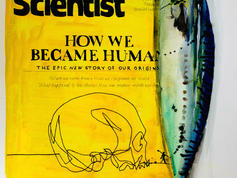 How We Became Human SOLD
