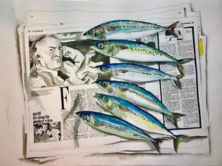 Fellini and the Fish