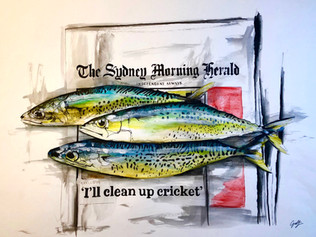 Morning Herald ( Let's clean up the ocean first )