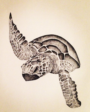 Turtling