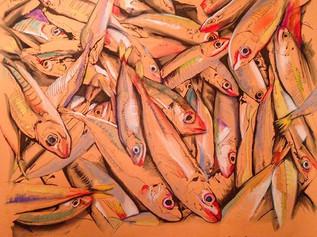 When the seas was full of fish. Rubboli Bolognini Private Collection, Rimini Italy