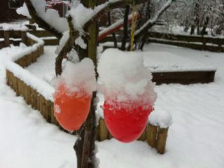 Pamband-Ostereier am Baum im Schnee