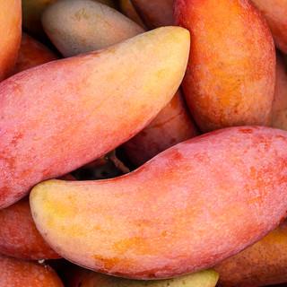 Mango Frutti