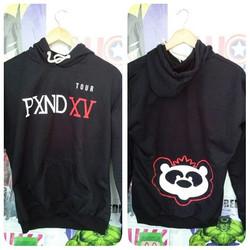 Buzo Panda band