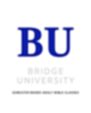 Bridge University website.png