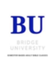 Bridge University website.png