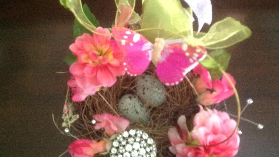 Beautiful Bird's Nest