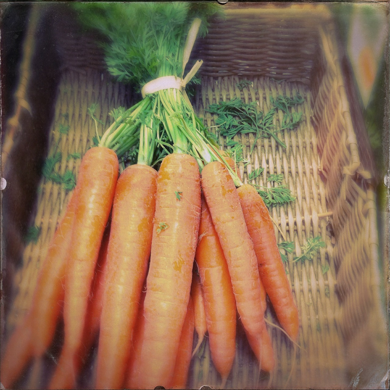 carrots-381332_1280