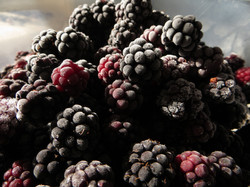 blackberry-751572_1920