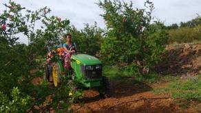 Have you met Savita Kumbhar, our tractor lady from Sangli, Maharashtra?