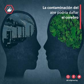 La contaminación del aire podría dañar el cerebro