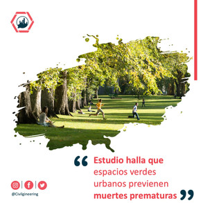 Estudio halla que espacios verdes urbanos previenen muertes prematuras