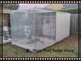 custom aviary, Mouse proof aviary, Budgie Aviary, finch aviary.
