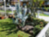 Landscaping Keilor.jpg