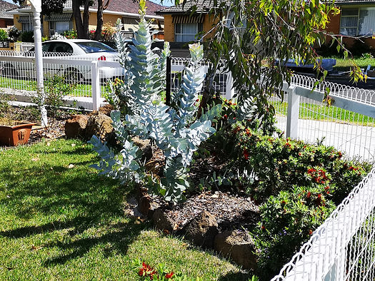 Landscaping Keilor.jpg