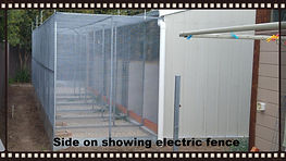 Aviary with electric fence