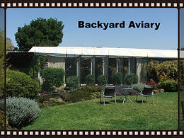 finch aviary, garden aviary, flight aviary, planted aviary, custom aviary