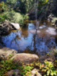 Ponds Melton.jpg