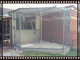custom aviary, weldmesh aviary large parrot aviary, flight,