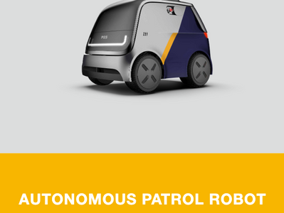Boosting Security with Patrol Robots