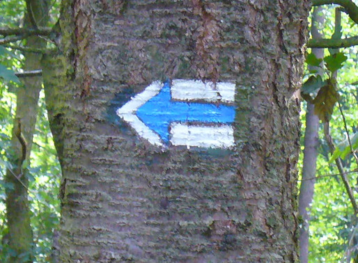 Do you know what these Trail marks means ?