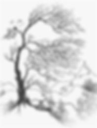 Baum-Kreuz_hiob14,7.jpg
