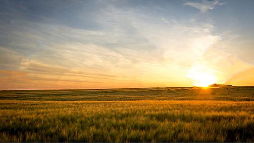 stock-photo-sunset-on-the-field-70672629