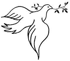 Taube-Friedenstaube.jpg