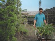 Seller Z Plant 7.jpeg
