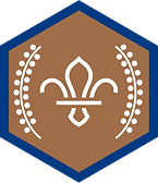 chief-scouts-bronze-award-beavers-rgb-pn